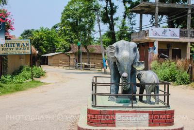 Elephant statue in Sauraha