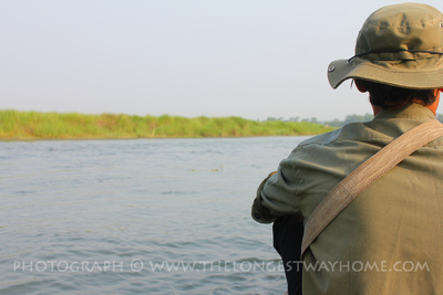 Take a canoe down the Rapti river in Chitwan