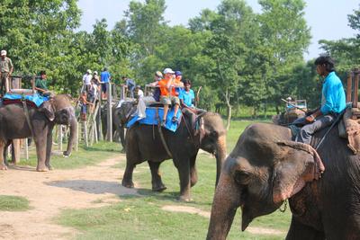 Elephant jungle trek waiting area in Chitwan