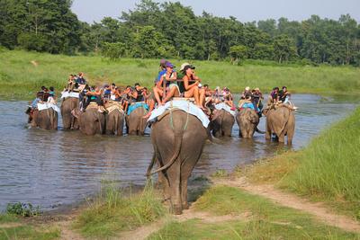 Tourists on elephants in Chitwan