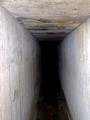Tiny escape tunnels Bikit Maung, Penang