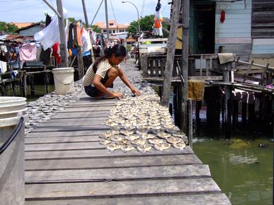 Woman drying fish in a slum in Malaysia