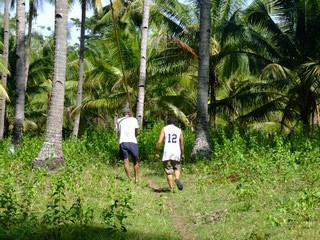 walking to collect coconuts
