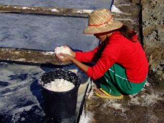 Young sea salt maker