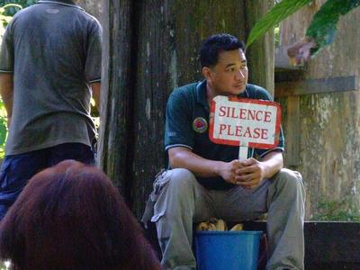 Orangutan feeder telling people to be quite